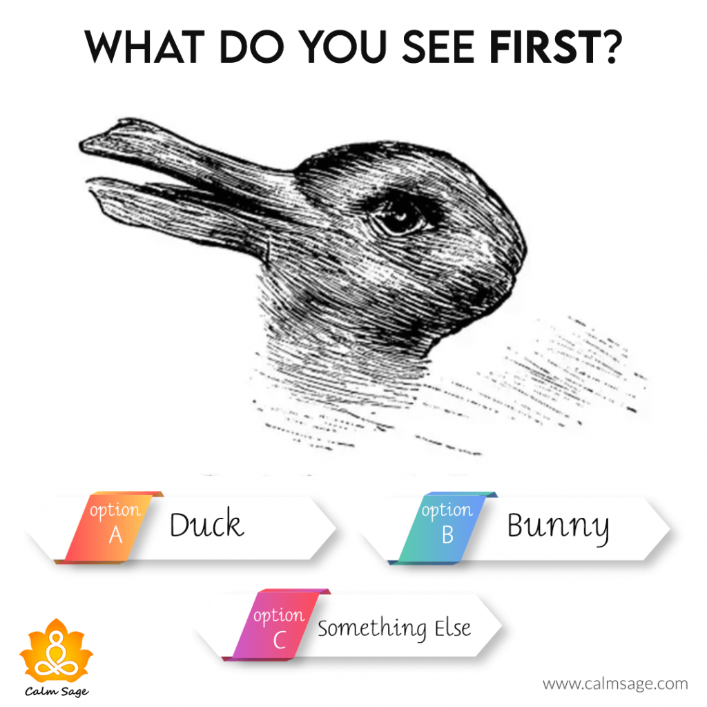 what do you see first a duck, a bunny or something else