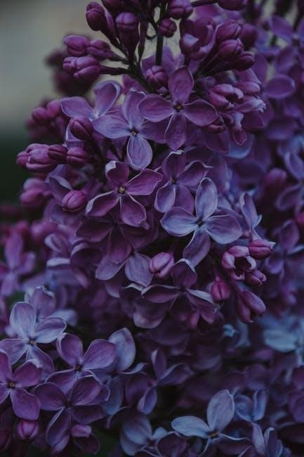 A Bunch Of Lilac Flowers, calm wallpaper for phone