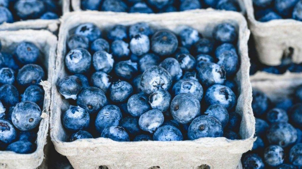 Best Foods That Increase Concentration