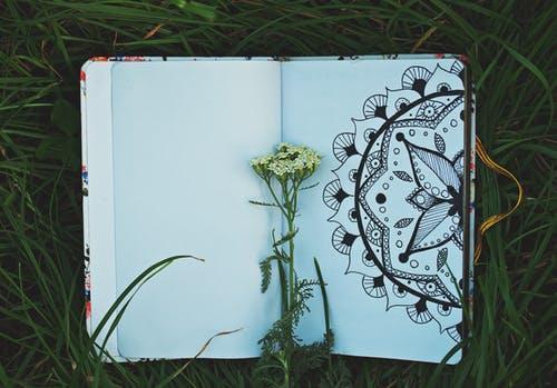 maintain a Gratitude diary
