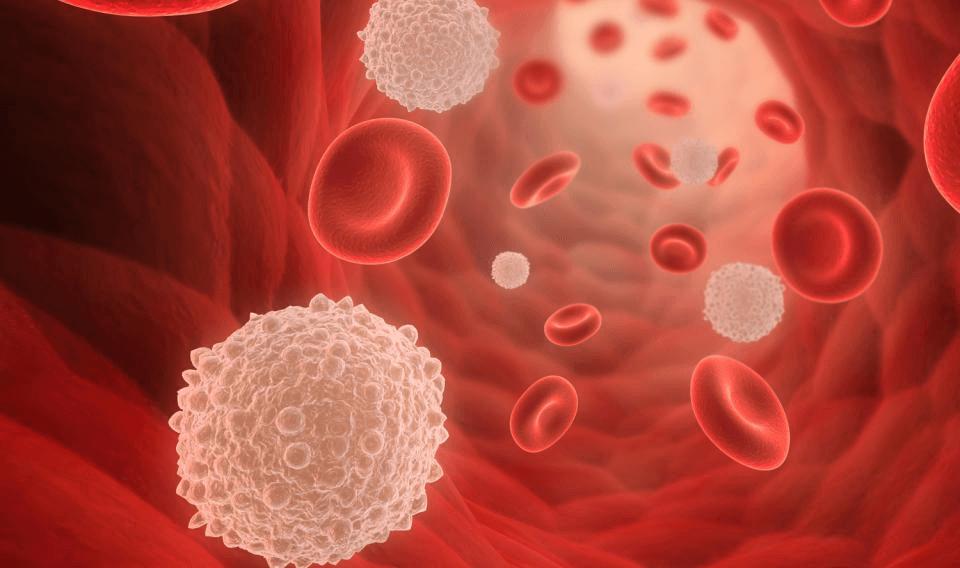 Fear Boost Immunity System