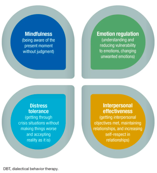 Modules of Dialectical Behavior Therapy