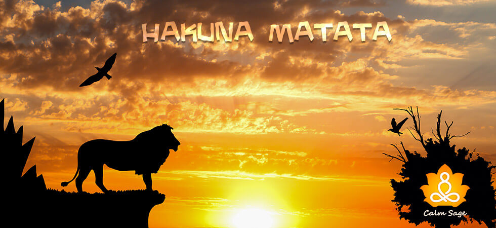 what hakuna matata means