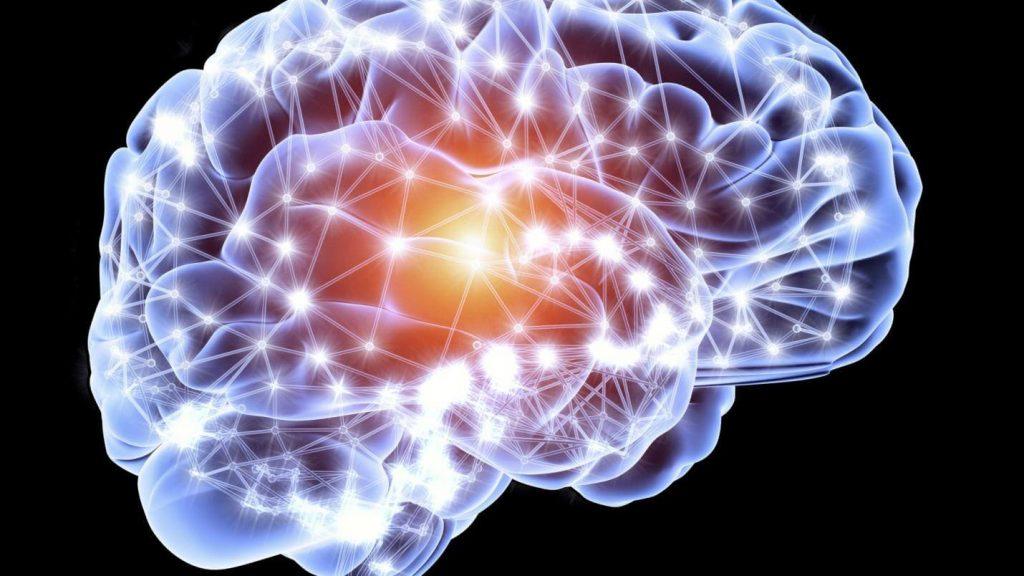 Generates more Brain Cells