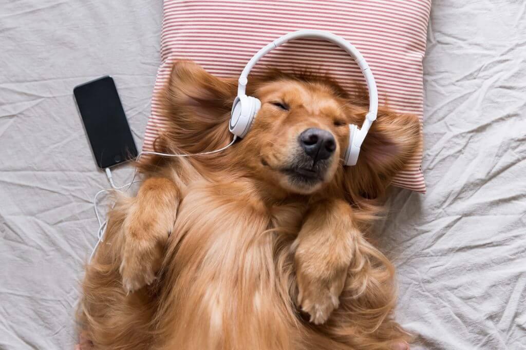 music for a deep sleep