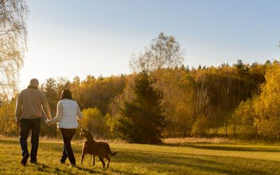 Does walking really improve mental health