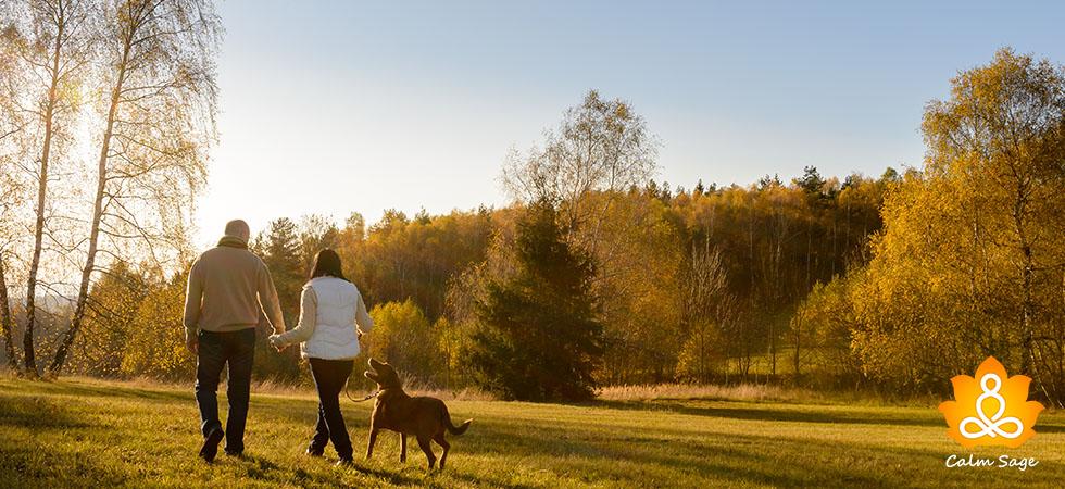 Does walking really improve mental health