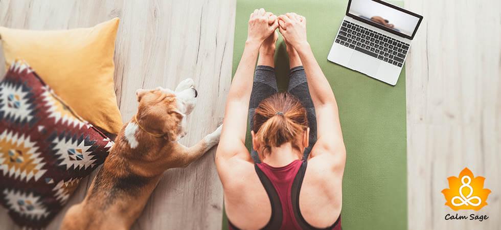 Yoga apps for Beginner people