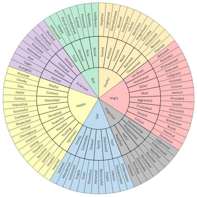 the Emotion Wheel