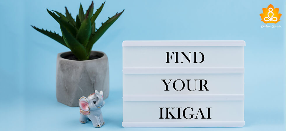 Ikigai A Way To Find Your Purpose and Passion In Life