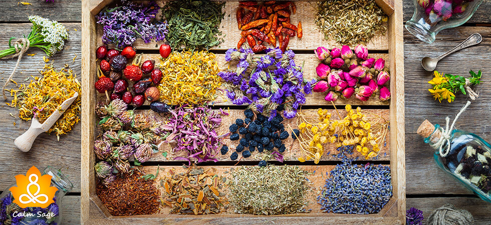 A-Guide-to-Medicinal-Plants-And-Their-Benefits