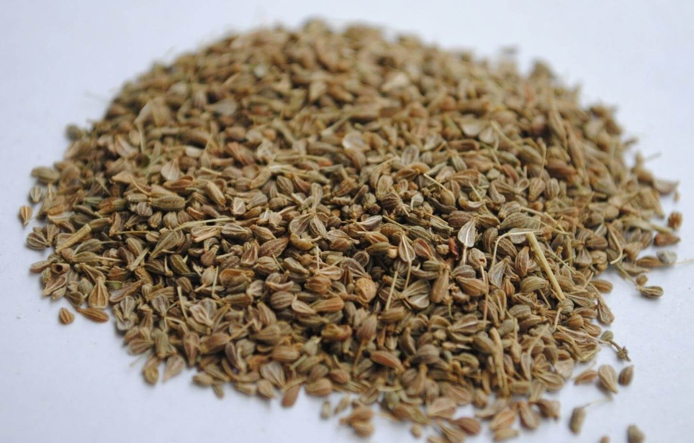Flax Seeds, medicinal plants and their uses