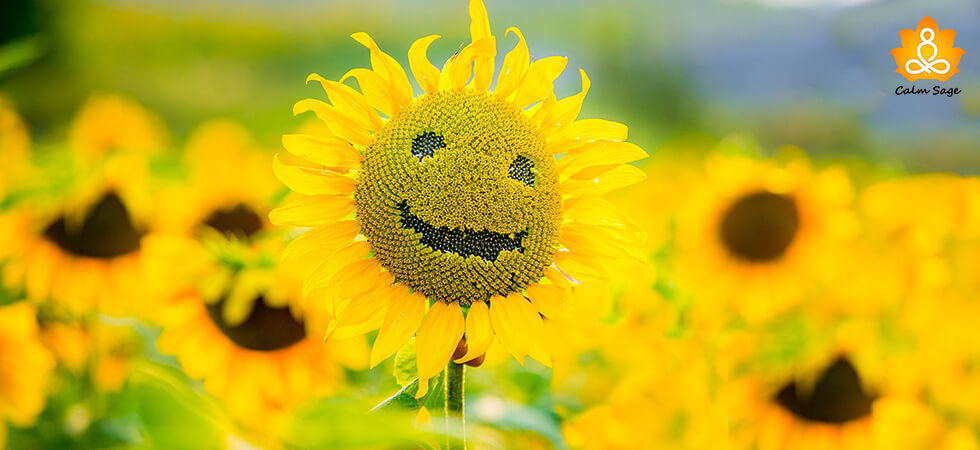 Positive Emotions In Our Life Beyond Happiness