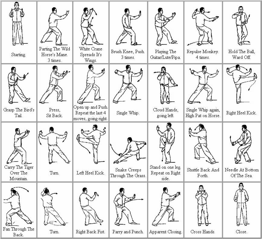 Tai chi styles