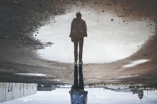 Self-Reflect