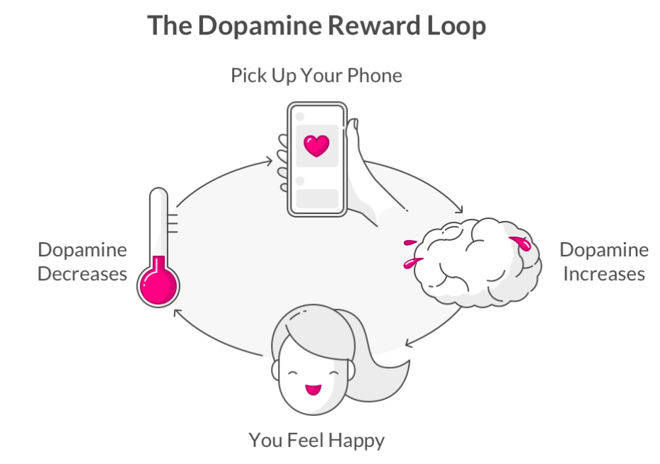 dopamine reward loop