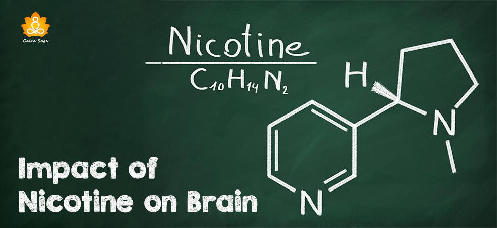 Impact of Nicotine on Brain