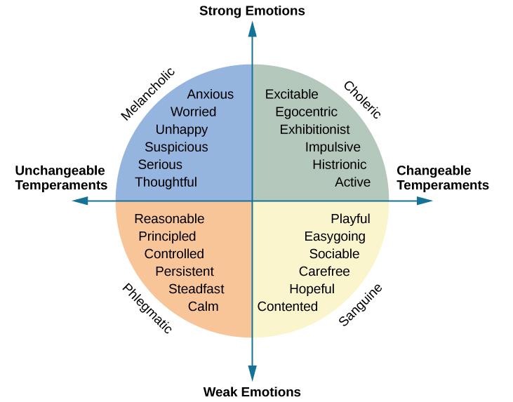 Four Types Of Temperament