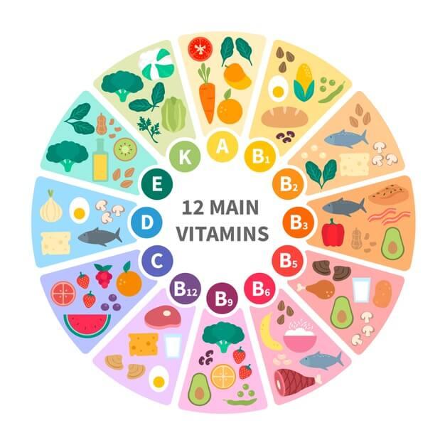 12 main vitamins