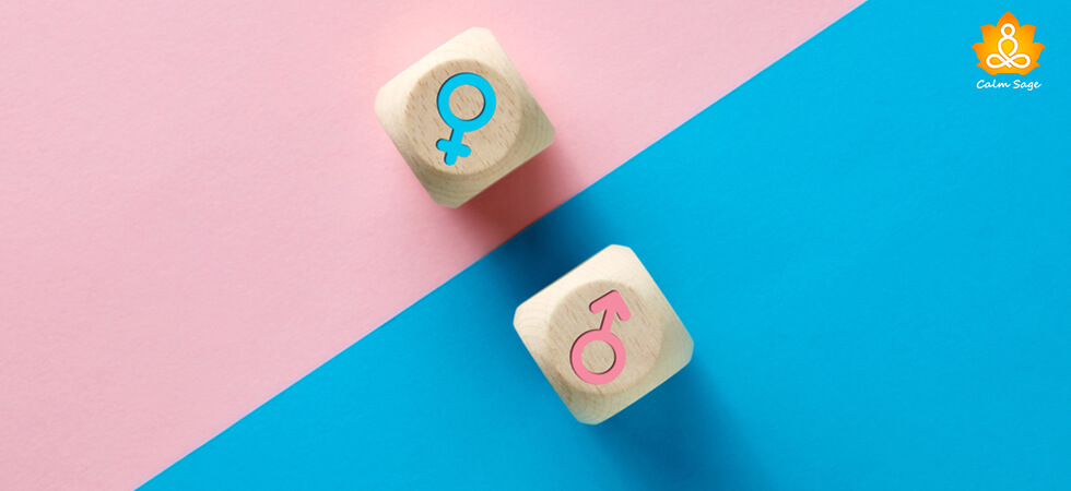 Glossary of Gender and Sexual Identity terms