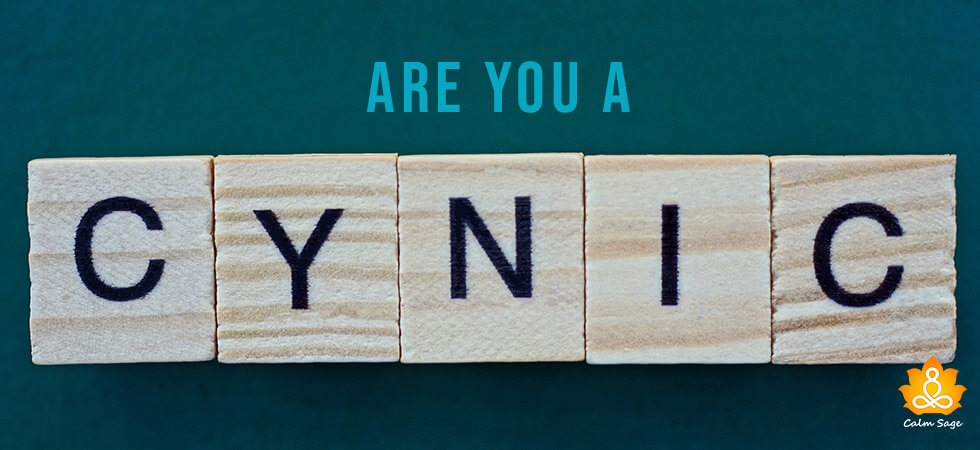 Are you a cynic