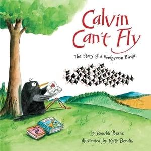 calvin_cant_fly