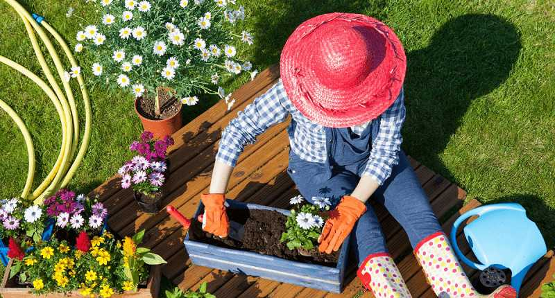 gardening help you with mindfulness