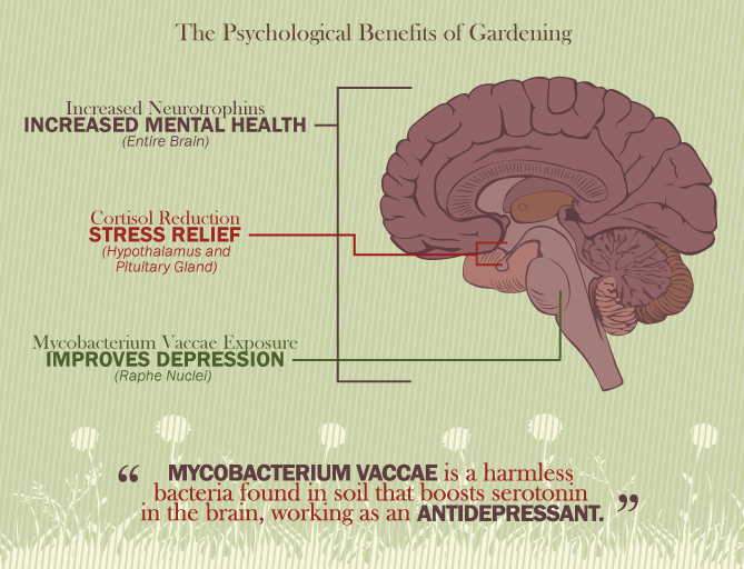 psychological benefits of gardening