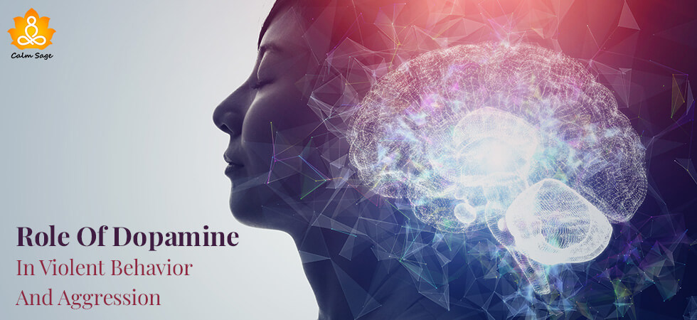 Role Of Dopamine In Violent Behavior