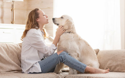 Mental Health Benefits Of An Emotional Support Animal
